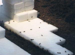 Carlos Garaicoa, 'Principios basicos para destruir', 2008   | Courtesy Carlos Garaicoa